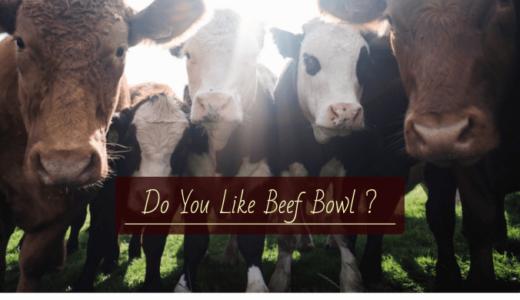 牛丼チェーン業界をざっくり解説|店舗数、各社の売りや特徴は?